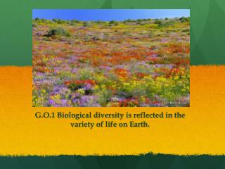 G.O.1  Biological diversity is reflected in the variety of life on Earth.