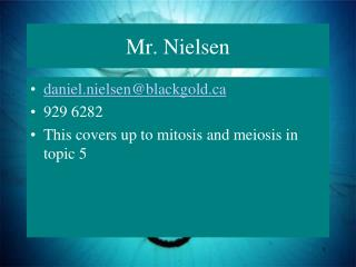 Mr. Nielsen