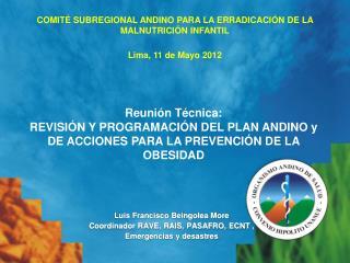 Luis Francisco  Beingolea  More Coordinador RAVE, RAIS, PASAFRO, ECNT , Emergencias y desastres