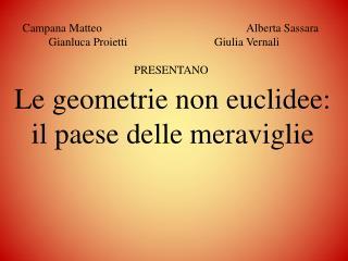 Le geometrie non euclidee: il paese delle meraviglie
