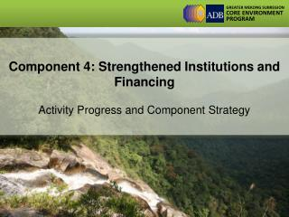 Component 4: Strengthened Institutions and Financing  Activity Progress and Component Strategy