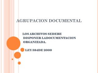 AGRUPACION DOCUMENTAL
