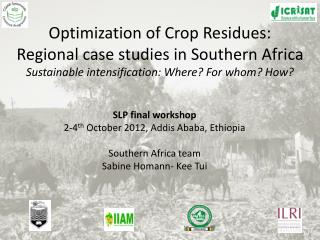SLP final workshop 2-4 th  October 2012, Addis Ababa, Ethiopia Southern Africa team