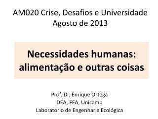 AM020 Crise, Desafios e Universidade Agosto de  2013