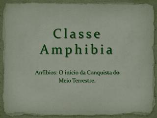 Classe  Amphibia
