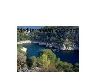 Mediterranean  Shrubland