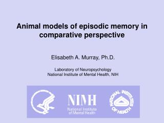 Animal models of episodic memory in comparative perspective