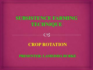 SUBSISTENCE FARMING TECHNIQUE