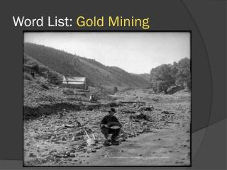 Word List:  Gold Mining