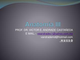 Anatomía III