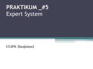 PRAKTIKUM  _# 5 Expert System
