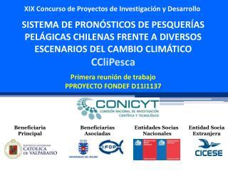 XIX Concurso de Proyectos de Investigación y Desarrollo