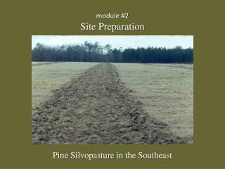 module #2 Site Preparation