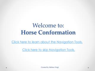 Welcome to: Horse Conformation