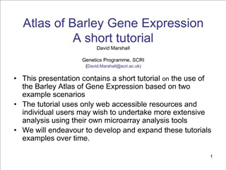Atlas of Barley Gene Expression A short tutorial David ...