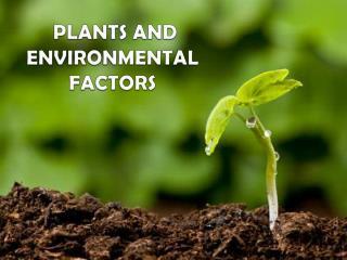 PLANTS AND ENVIRONMENTAL FACTORS