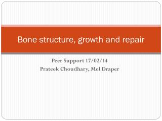 Bone structure, growth and repair
