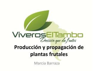 Producción  y propagación de  plantas  frutales
