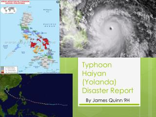 Typhoon Haiyan (Yolanda) Disaster Report