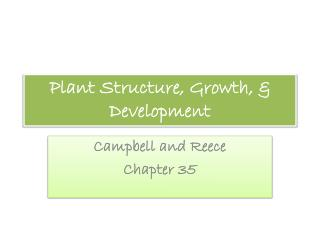 Plant Structure, Growth, & Development