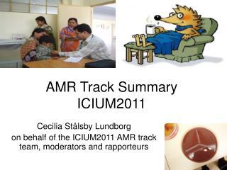 AMR  T rack Summary  ICIUM2011