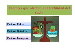 Factores que afectan a la fertilidad del suelo