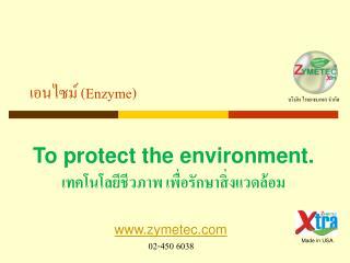 เอนไซม์  (Enzyme)