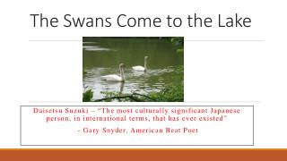 The Swans Come to the Lake
