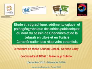 Directeurs  de thèse : Adrian  Cerepi,  Corinne Loisy Co-Encadrant TOTAL : Jean-Loup  Rubino