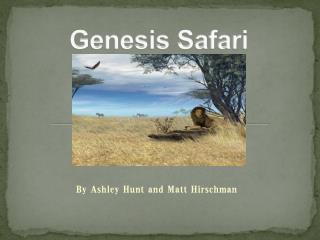 Genesis Safari