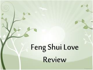 Feng Shui:  The Review