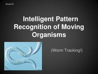 Intelligent Pattern Recognition of Moving Organisms