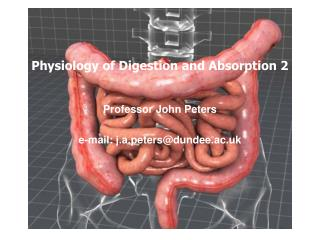 Physiology of Digestion and Absorption 2