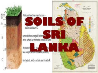 SOILS OF SRI LANKA