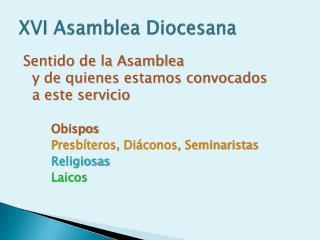 XVI Asamblea Diocesana