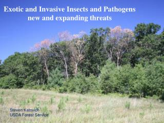 Exotic and Invasive Insects and Pathogens  new and expanding threats