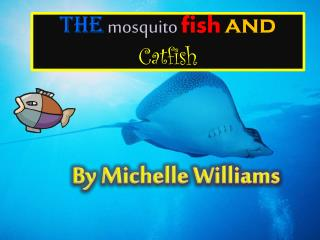 The mosquito fish and Catfish