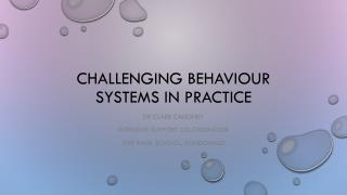 Challenging behaviour systems in practice