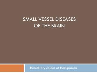 Small Vessel Diseases  of  the Brain
