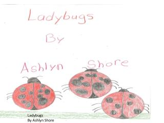 Ladybugs By  Ashlyn  Shore