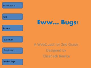 Eww … Bugs!