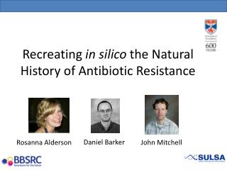 Recreating  in silico  the Natural History of Antibiotic Resistance