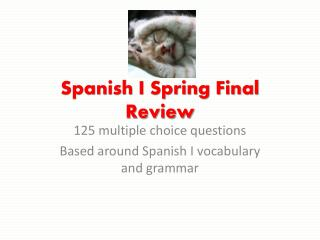 Spanish I Spring Final Review