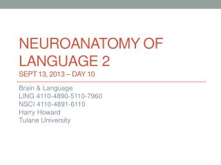 Neuroanatomy  of  language 2 Sept 13, 2013 – DAY  10
