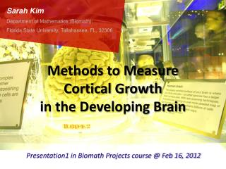 Methods to Measure  Cortical Growth  in the Developing Brain