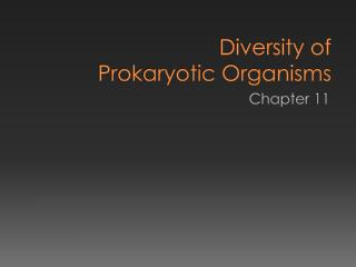 Diversity of  Prokaryotic Organisms