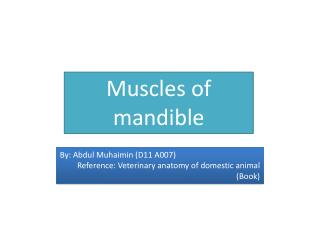 Muscles of mandible