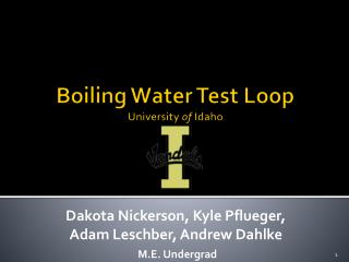 Boiling Water Test Loop University  of  Idaho