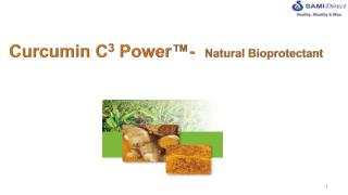 Curcumin  C 3  Power ™-   Natural  Bioprotectant