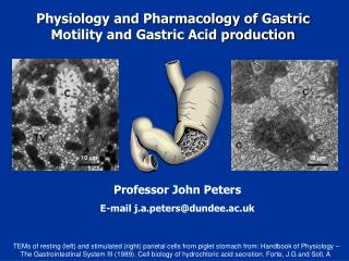 Physiology and Pharmacology of Gastric Motility and Gastric Acid production